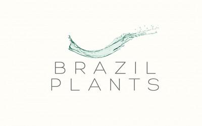 Logo Brazil Atlantis